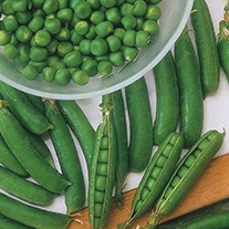 Pea (Petit Pois) Calibra Seeds