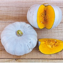 Pumpkin Crown Prince F1 AGM Seeds