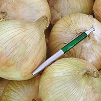 Onion (Globe) Globo F1 Seeds