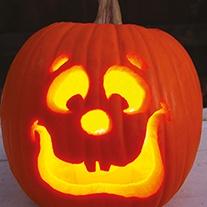 Pumpkin Charmant PM F1 Seeds