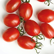 Tomato Sun Grape F1 Seeds