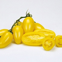 Tomato (Heritage) Cream Sausage Seeds
