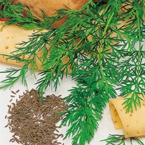 Caraway Herb Seeds
