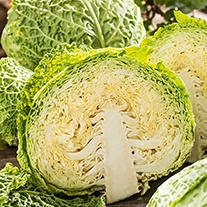 Cabbage Best of All Veg Seeds