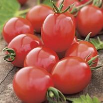 Tomato Apero Seeds