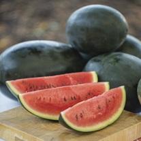 Watermelon Little Darling F1 Seeds