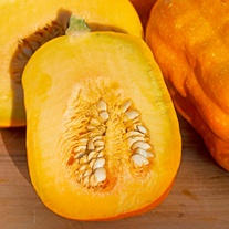 Squash (Winter) Gill's Golden Pippin Seeds