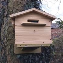 Beepol Tree Villa and Bumblebee Hive