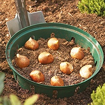 Bulb Planting Baskets (3 x 23 x 21cm rectangular)