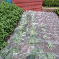 Enviromesh Plant Protection Netting