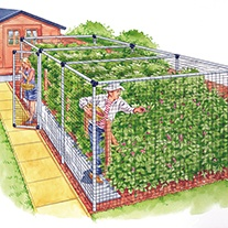 Fruit Cage Door - Deluxe
