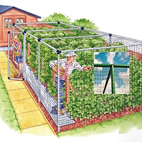 Fruit Cage - Deluxe 24'x42'