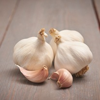 Garlic Flavor Bulbs (Softneck)