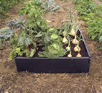 Raised Grow Bed Kits
