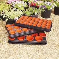 Growing Trays and Pots- 3 Small Growing Trays of 40 x 6cm Pots