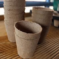 Refill Jiffy Pots