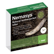 Nemasys® Biological Leatherjacket Killer 100m²