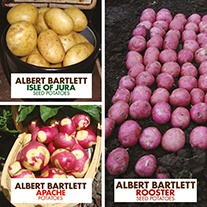 Albert Bartlett Seed Potato Collection