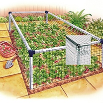 Strawberry Cage - Standard 3'x6'