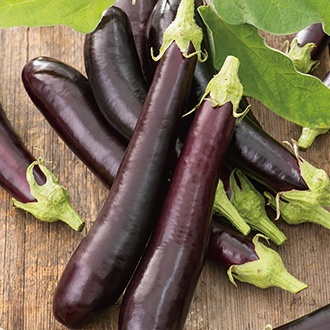 Aubergine Early Long Purple 2 Seeds