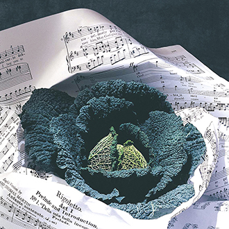 Cabbage (Savoy) Rigoletto F1 AGM Seeds