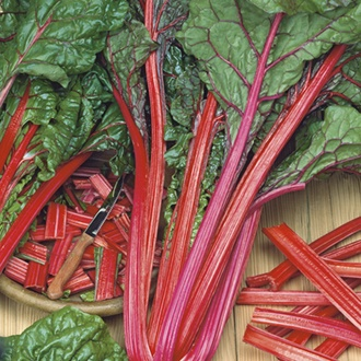 Chard (Rhubarb) Charlotte AGM Seeds
