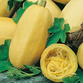 how to cut and seed a spaghetti squash