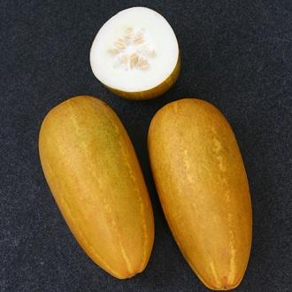Cucumber (Indoor) Prolific Seeds