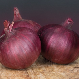 Onion (Globe) Redlander F1 Seeds