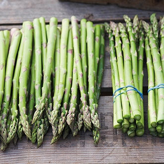 Asparagus Pacific Challenger Crowns