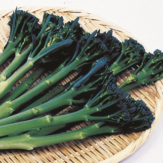 Broccoli Tenderstem Green Inspiration F1 Seeds