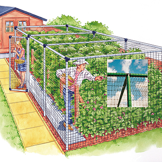 Fruit Cage - Deluxe 6'x6'