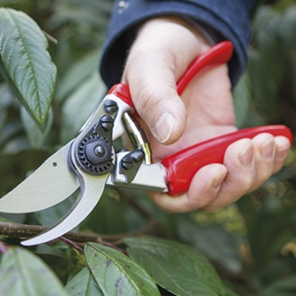 Darlac Expert Rotating Bypass Secateurs/Pruner