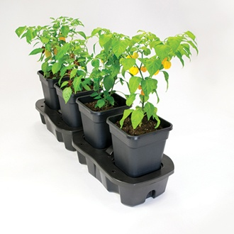 Quadgrow Pots Watering System, 8 pots
