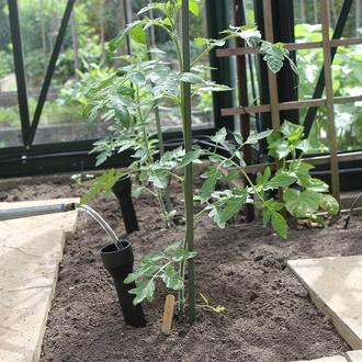 Root Watering Funnels