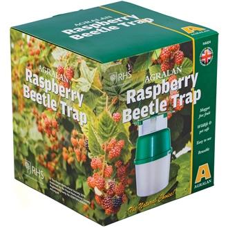 Raspberry Beetle Trap & Refill Pack