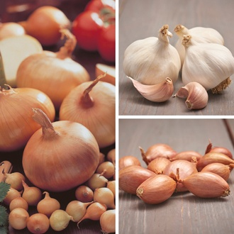 Spring Planting - Onion, Shallot and Garlic Collection
