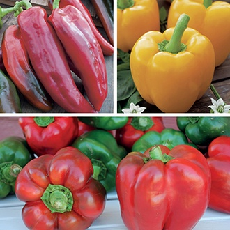 Sweet Pepper Plant Collection