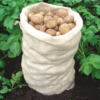 Potato Storage Sacks
