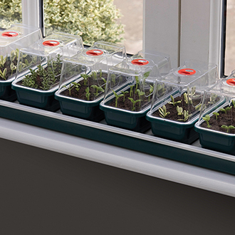 Windowsill Seed Propagator - Super 7 Electric