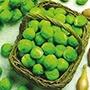 Brussels Sprout Bedford (Fillbasket)