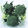 Broccoli Matsuri F1 Vegetable Seeds