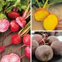 Beetroot Vegetable Plant Collection