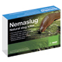 Nemaslug Slug Killer 100m² packet