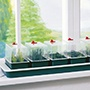 Windowsill Seed Propagator - Super 7 non-electric