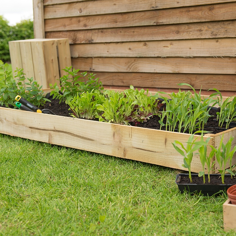 Standard Raised Bed From D T Brown