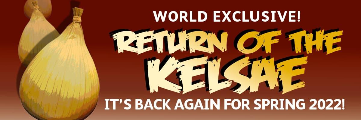 The Kelsae Onion is back