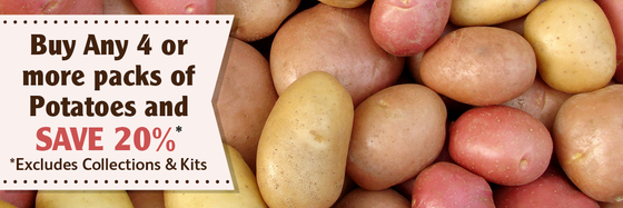 Buy 4 packs of seed potatoes and save 20 percent
