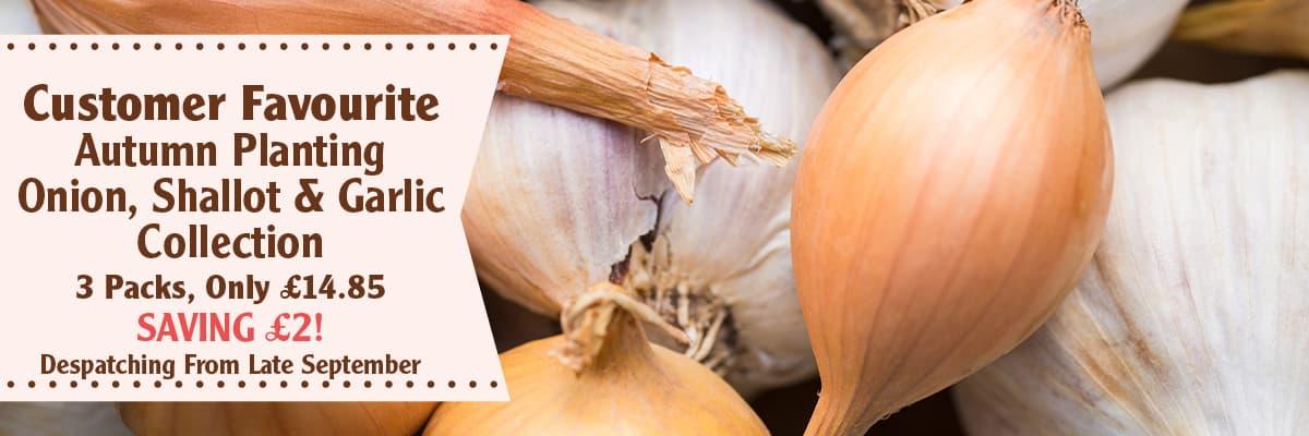 Onion Shallot and Garlic Collection
