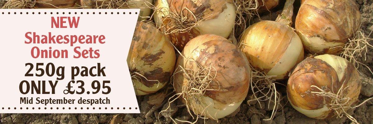 Onion Shakespeare